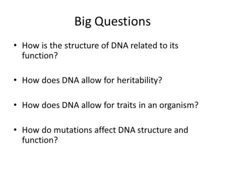 Big Questions How is the structure of DNA related to its function? How does DNA allow for heritability? How does DNA allow for traits in an organism? How.