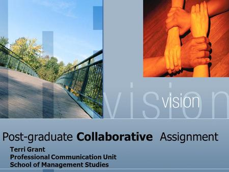 Post-graduate Collaborative Assignment Terri Grant Professional Communication Unit School of Management Studies.