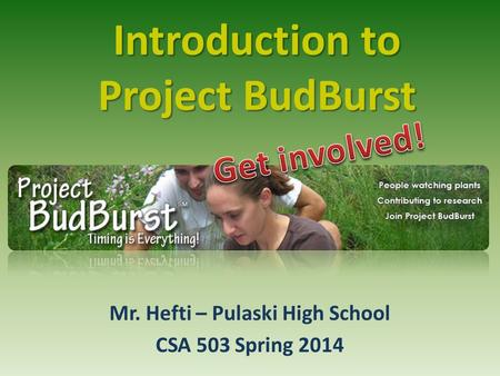 Introduction to Project BudBurst Mr. Hefti – Pulaski High School CSA 503 Spring 2014.