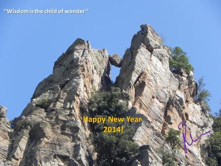 ''Wisdom is the child of wonder'' Happy New Year 2014!