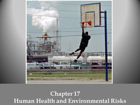 Chapter 17 Human Health and Environmental Risks. Three categories of human health risks o physical o biological o chemical.