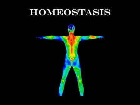 Homeostasis Defined: The maintenance of a constant internal environment Importance: Body processes work best in specific conditions.