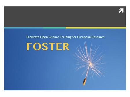 . The Foster Project  Intro  Partners  Project Objectives, Activities and Management  Final Remarks.