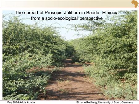 May 2014 Addis Ababa Simone Rettberg, University of Bonn, Germany 1 The spread of Prosopis Juliflora in Baadu, Ethiopia from a socio-ecological perspective.