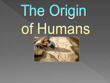 The Origin of Humans.