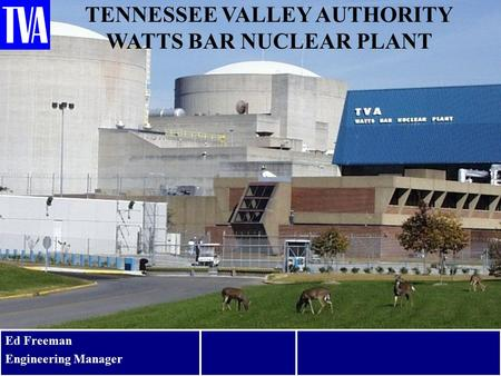 TENNESSEE VALLEY AUTHORITY WATTS BAR NUCLEAR PLANT Ed Freeman Engineering Manager 1.
