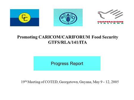 19 th Meeting of COTED, Georgetown, Guyana, May 9 - 12, 2005 Promoting CARICOM/CARIFORUM Food Security GTFS/RLA/141/ITA Progress Report.