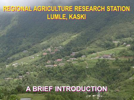 REGIONAL AGRICULTURE RESEARCH STATION