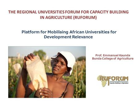 THE REGIONAL UNIVERSITIES FORUM FOR CAPACITY BUILDING IN AGRICULTURE (RUFORUM) Platform for Mobilising African Universities for Development Relevance Prof.