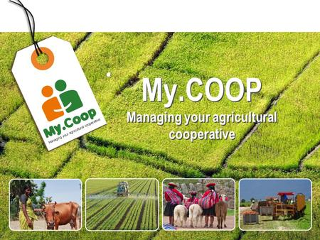 1 MODULE My.COOP Managing your agricultural cooperative.