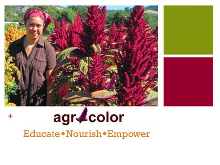 + agr color Educate  Nourish  Empower. + Why Bolivia? Poverty Food Crisis Malnourishment Why Amaranth? Locally Available Nutrients and Vitamins Adaptability.