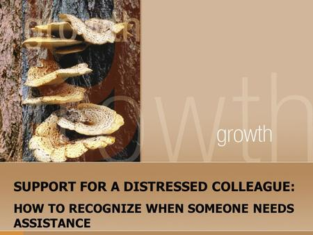 SUPPORT FOR A DISTRESSED COLLEAGUE: HOW TO RECOGNIZE WHEN SOMEONE NEEDS ASSISTANCE.