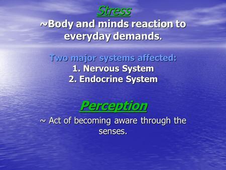 essay systems body