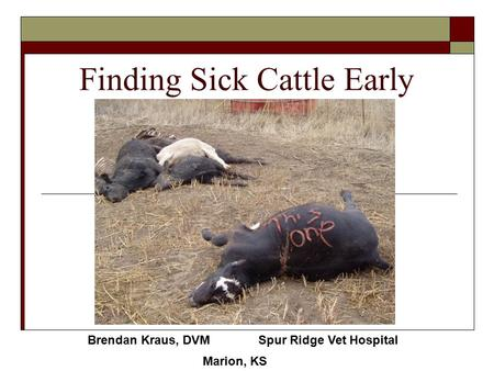 Finding Sick Cattle Early Brendan Kraus, DVM Spur Ridge Vet Hospital Marion, KS.