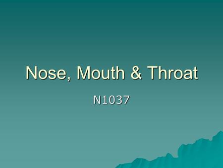 Nose, Mouth & Throat N1037. Nose A & P Review structure and function of External nose, nasal fossa, internal nose (p 377) Review structure and function.