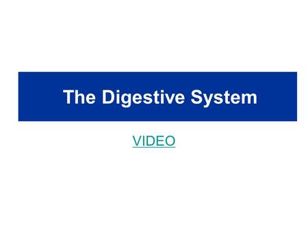 The Digestive System VIDEO. Food Processing Ingestion – eating or drinking Digestion – break down molecules to absorb –Hydrolysis: the process of breaking.