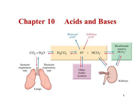 1 Chapter 10 Acids and Bases. 2 3 4 5  Arrhenius acids  Produce H + ions in water. H 2 O HCl H + (aq) + Cl – (aq)  Are electrolytes.  Have a sour.