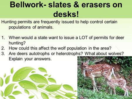 Bellwork- slates & erasers on desks! Hunting permits are frequently issued to help control certain populations of animals. 1.When would a state want to.