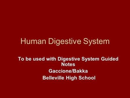 Human Digestive System To be used with Digestive System Guided Notes Gaccione/Bakka Belleville High School.