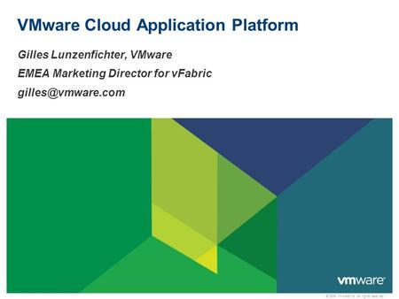 © 2009 VMware Inc. All rights reserved VMware Cloud Application Platform Gilles Lunzenfichter, VMware EMEA Marketing Director for vFabric