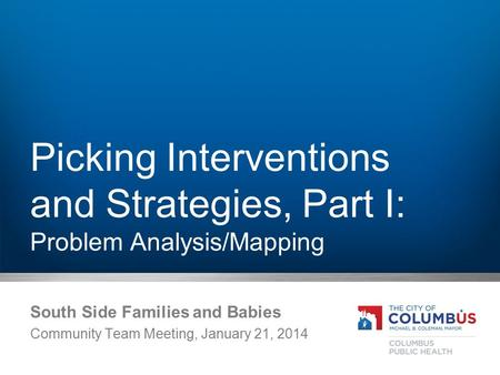 Picking Interventions and Strategies, Part I: Problem Analysis/Mapping South Side Families and Babies Community Team Meeting, January 21, 2014.
