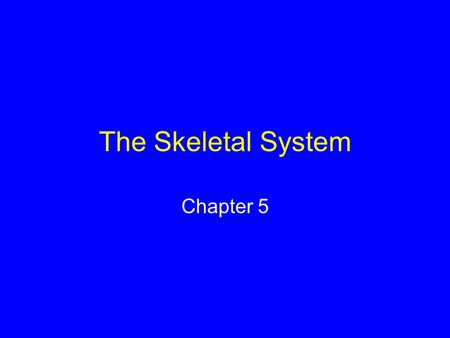 The Skeletal System Chapter 5. Long-Bone Structure Compact bone Spongy bone Central cavity contains yellow marrow.