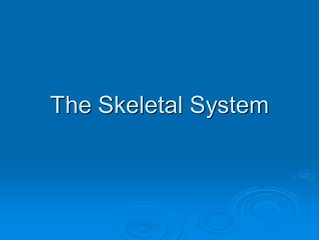 The Skeletal System. Functions of the Skeletal System  Provides a framework for the muscles.  Supports and protects organs.  Storage centers.  Manufacture.