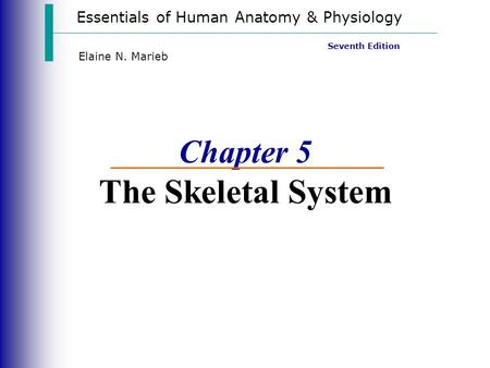 Essentials of Human Anatomy & Physiology Seventh Edition Elaine N. Marieb Chapter 5 The Skeletal System.