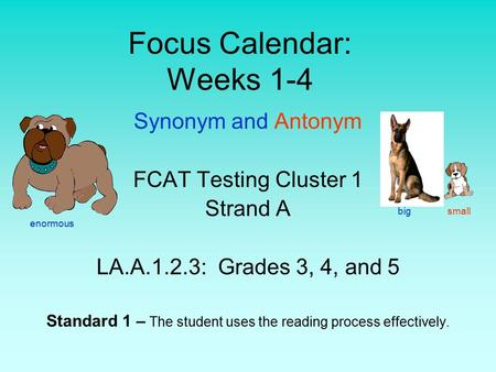 Focus Calendar: Weeks 1-4 Synonym and Antonym FCAT Testing Cluster 1 Strand A LA.A.1.2.3: Grades 3, 4, and 5 Standard 1 – The student uses the reading.