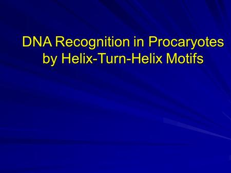 DNA Recognition in Procaryotes by Helix-Turn-Helix Motifs.