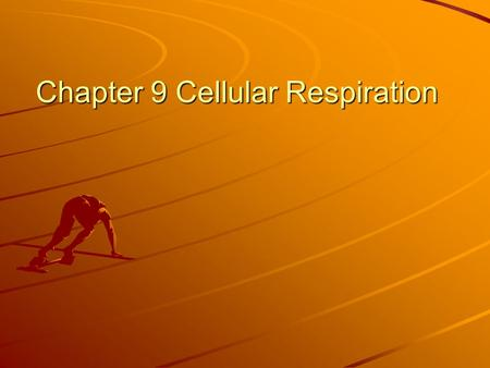 Chapter 9 Cellular Respiration. What is cellular respiration? The process that releases energy (ATP) by breaking down food molecules in the presence of.
