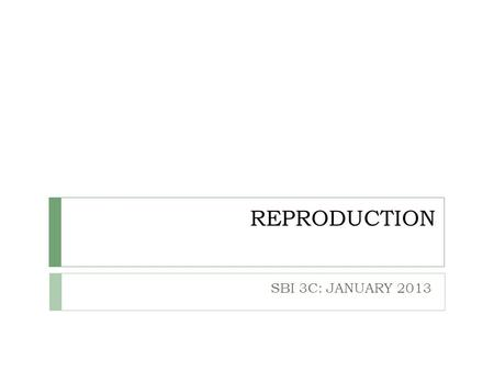 REPRODUCTION SBI 3C: JANUARY 2013. ASEXUAL REPRODUCTION  New individual is produced from one parent plant only  Genetically identical to parent  Occurs.
