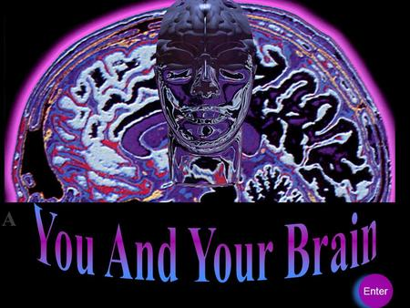 You And Your Brain Enter.