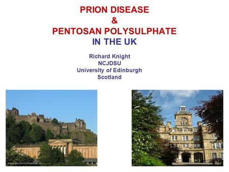 PRION DISEASE & PENTOSAN POLYSULPHATE IN THE UK Richard Knight NCJDSU University of Edinburgh Scotland.