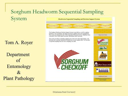 Oklahoma State University Sorghum Headworm Sequential Sampling System Tom A. Royer Department of Entomology & Plant Pathology.