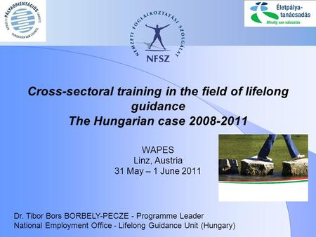 Cross-sectoral training in the field of lifelong guidance The Hungarian case 2008-2011 WAPES Linz, Austria 31 May – 1 June 2011 Dr. Tibor Bors BORBELY-PECZE.