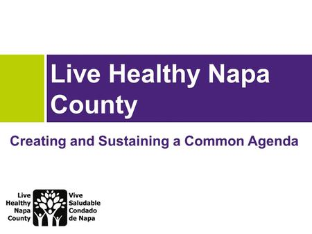 Live Healthy Napa County Creating and Sustaining a Common Agenda.