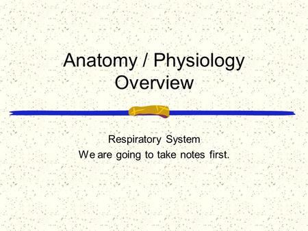 Anatomy / Physiology Overview Respiratory System We are going to take notes first.