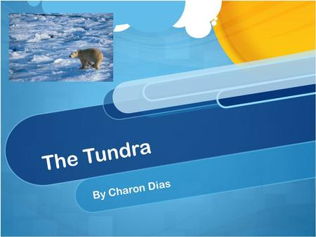 The Tundra By Charon Dias. The Tundra is located in the northern hemisphere. But there is one biome located in the south, Antarctica. The Tundra is one.