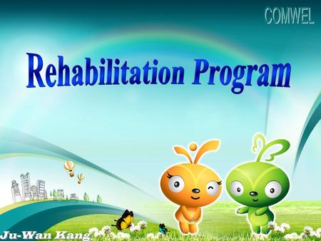 History Rehabilitation Counseling Support Programs Statistical Review I I II III IV.