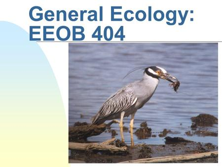 General Ecology: EEOB 404. Genetic Diversity and the Diversity of Life Topics for this class: n Introduction to Evolutionary Ecology n Factors that create.