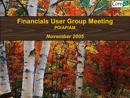 Financials User Group Meeting PO/AP/AM November 2005.