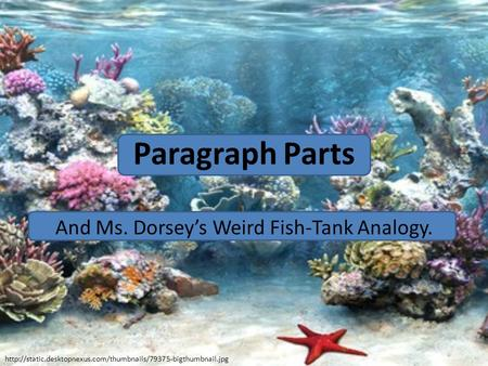 Paragraph Parts And Ms. Dorsey's Weird Fish-Tank Analogy.