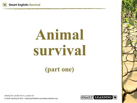 Aiming for Levels 4 to 6, Lesson 14 Smart English: Survival Animal survival (part one)