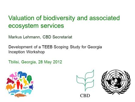 Valuation of biodiversity and associated ecosystem services Markus Lehmann, CBD Secretariat Development of a TEEB Scoping Study for Georgia Inception Workshop.