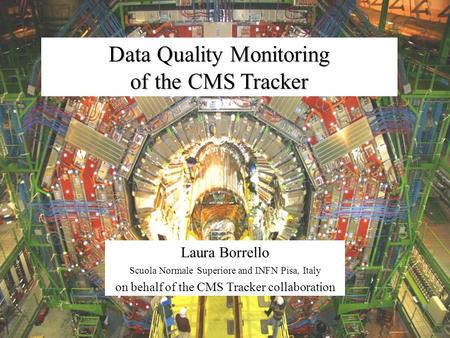 Data Quality Monitoring of the CMS Tracker