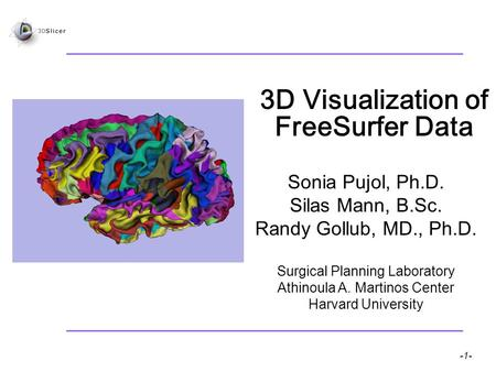-1- Pujol S et al. National Alliance for Medical Image Computing 3D Visualization of FreeSurfer Data Sonia Pujol, Ph.D. Silas Mann, B.Sc. Randy Gollub,