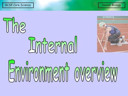 The Internal Environment overview.