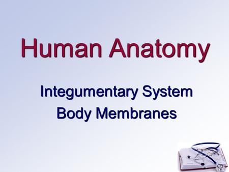 Human Anatomy Integumentary System Body Membranes.