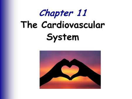 Chapter 11 The Cardiovascular System. The Cardiovascular System Slide 11.1 Copyright © 2003 Pearson Education, Inc. publishing as Benjamin Cummings 